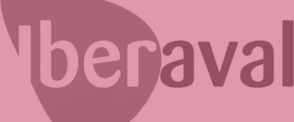 Imagen Post Iberaval: su papel en la creación de nuevos negocios